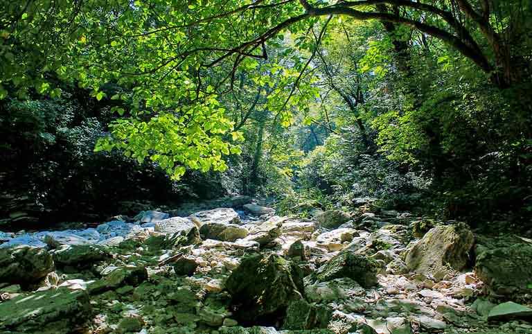 Экскурсия Агурское ущелье